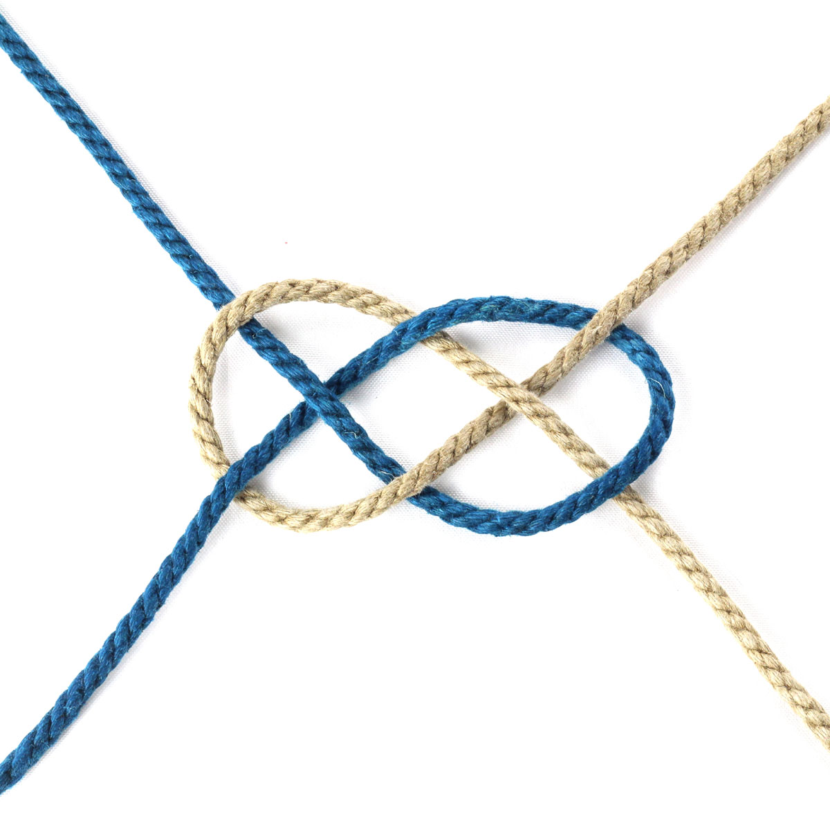 Double-Coin-Knot